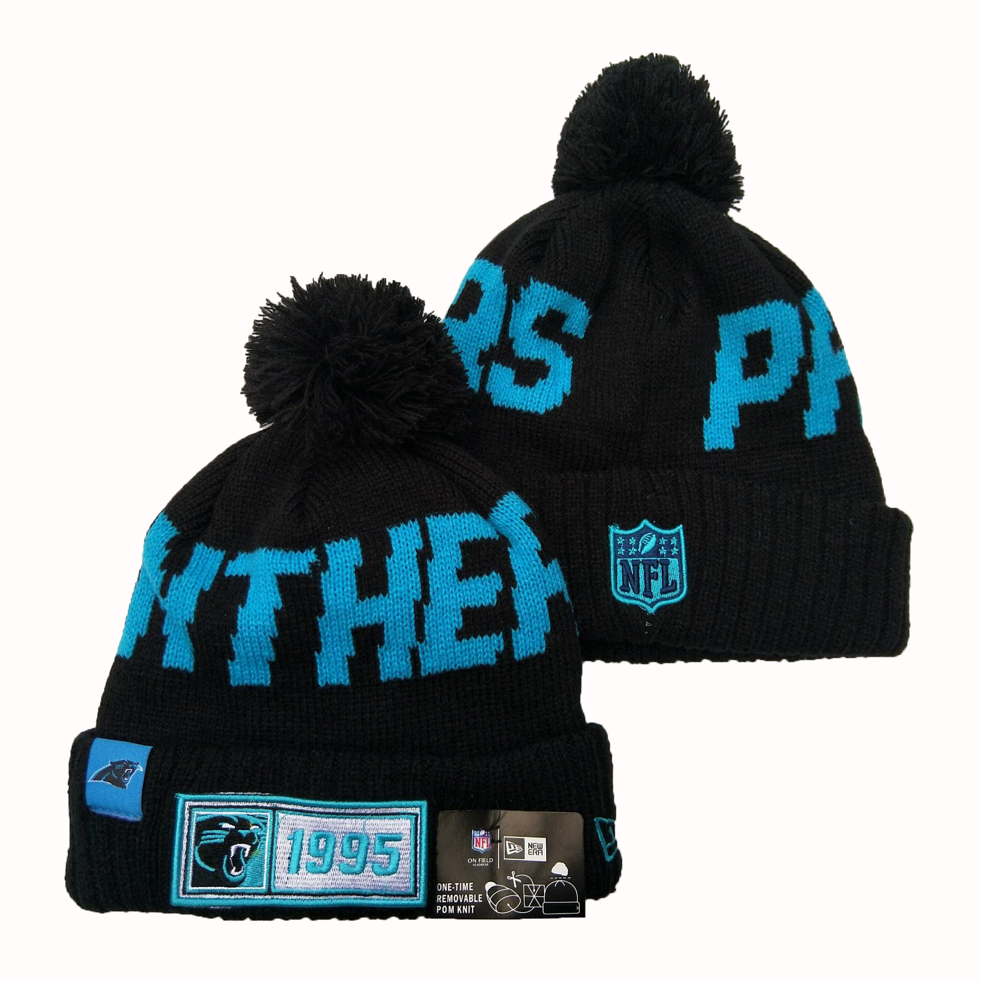 Panthers Team Logo Black 100th Season Pom Knit Hat YD