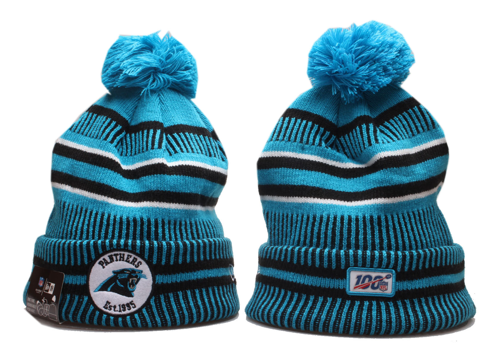 Panthers Team Logo 100th Season Cuffed Pom Knit Hat YP