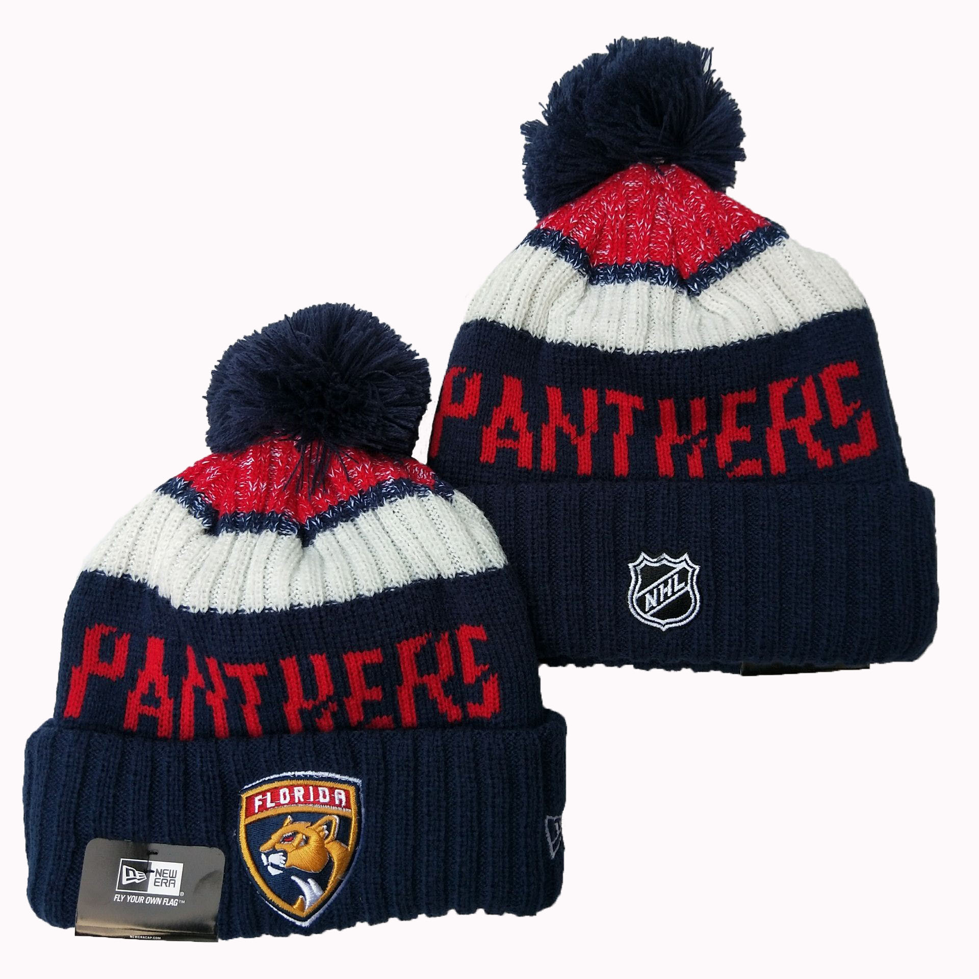 Panthers Team Logo Navy Pom Knit Hat YD