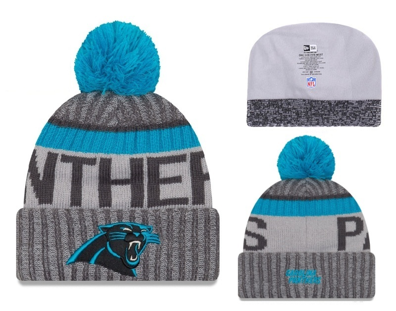 Panthers Team Logo Gray Pom Knit Hat YD