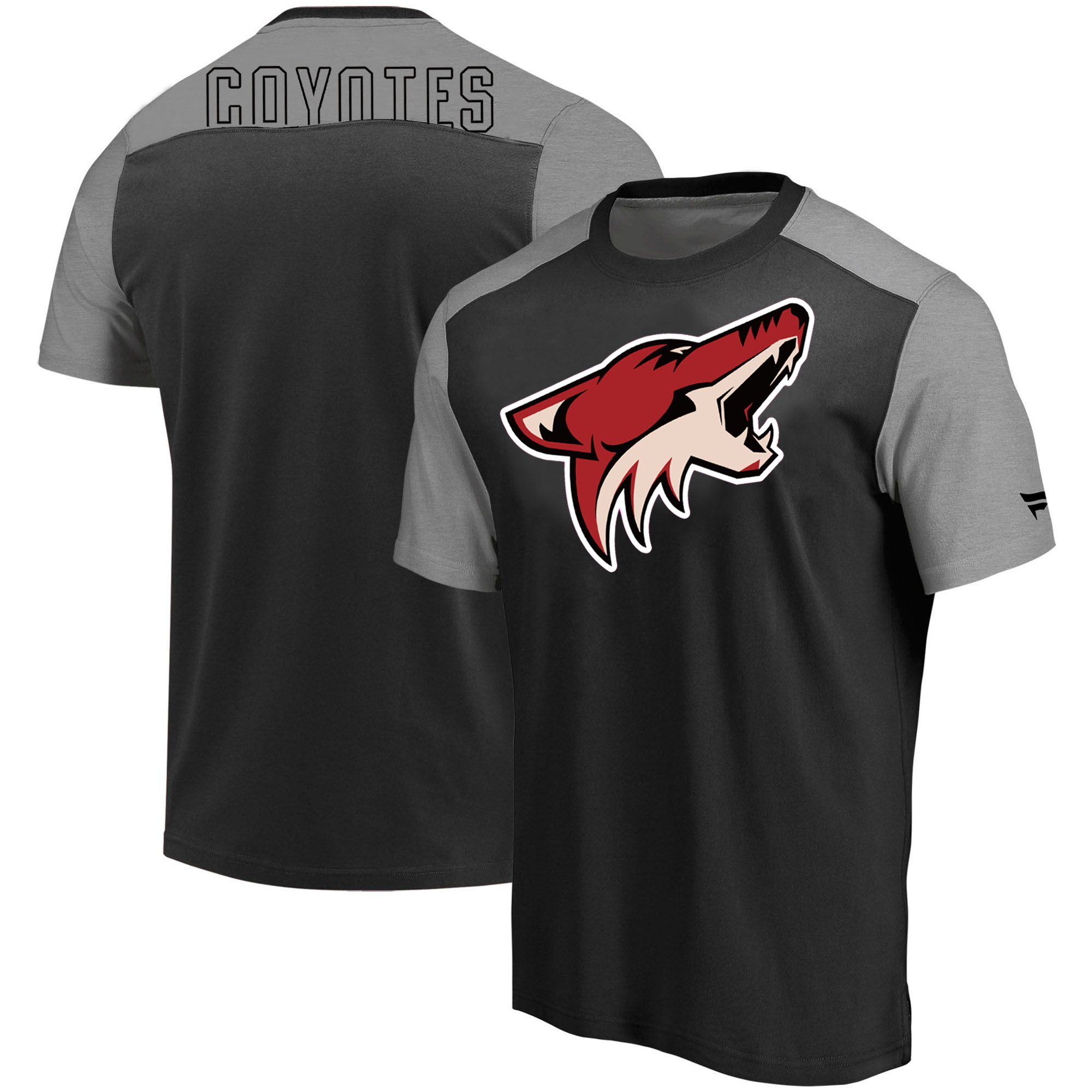 Arizona Coyotes Fanatics Branded Iconic Blocked T-Shirt Black Heathered Gray