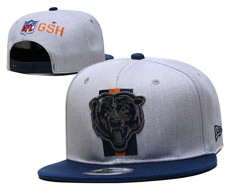 Bears Team Logo Gray Adjustable Hat YD